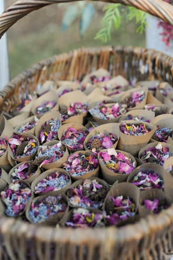 fiori di_ lavanda