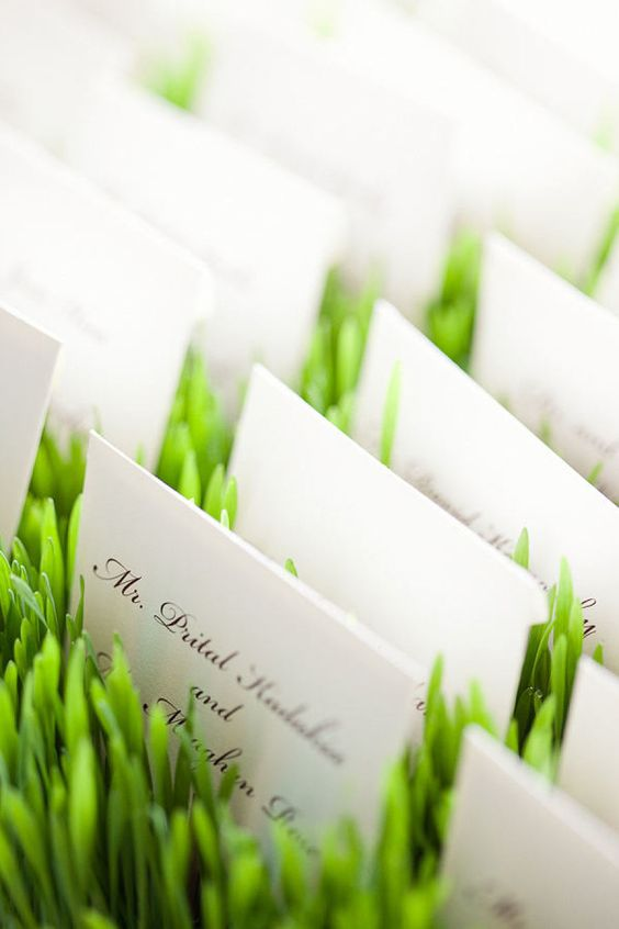 segnaposto greenery