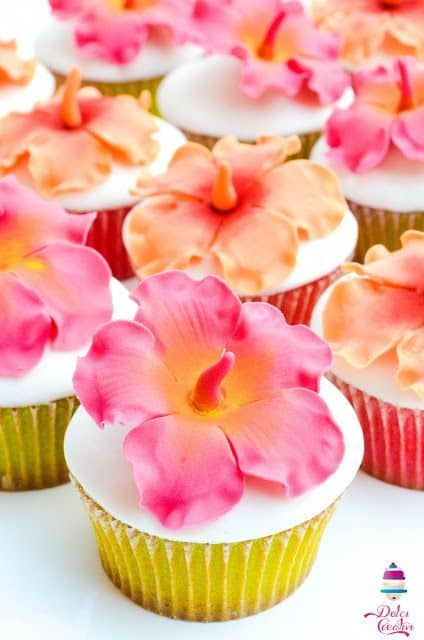 cupcake tropicale