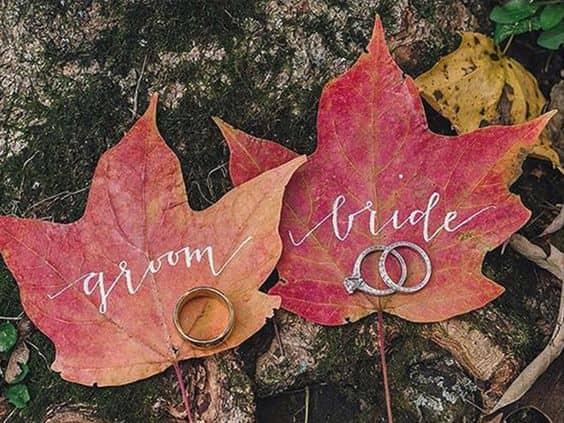 foglie sposi in autunno